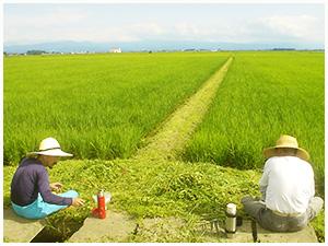 写真:田んぼの前で休憩するお百姓さん二人